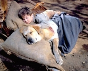Old Yeller (1957) Directed by Robert Stevenson Shown: Kevin Corcoran (as Arliss Coates)