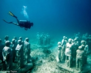 2-the-silent-evolution-depth-8m-cancun-mexico.jpg
