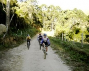 mountain-bike-9