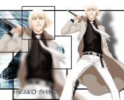 shinji-hirako-do-bleach-10