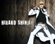 shinji-hirako-do-bleach-6