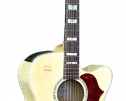 violoes-takamine-6