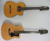 violoes-takamine-8