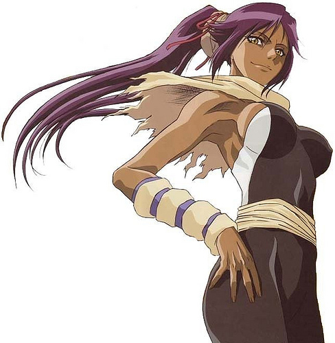 [Resultado] Popularidade dos Personagens de Bleach no Fórum NS 2015 Yoruichi-shihouin-do-bleach-3